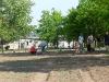 pflanzfest-2011-005