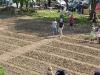 pflanzfest-2011-041