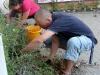 pflanzfest-2011-057